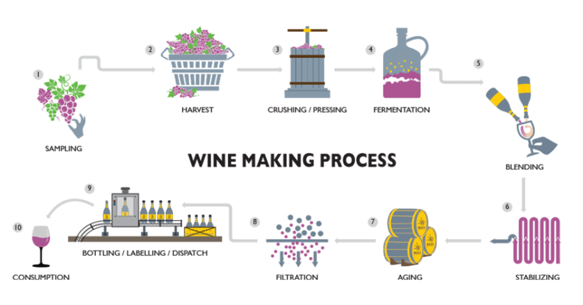 Wine Making Process in brief